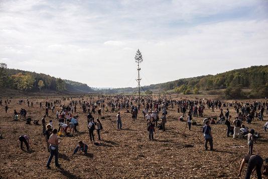 A letarolt terület november 2-án; Ulrich Lebeuf, M.Y.O.P., Le Monde