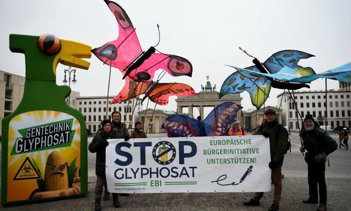 Az európai polgári kezdeményezés berlini nyitánya 2017. február 8-án, fotó: AFP, forrás. landmark the Brandenburg Gate. Glyphosate is suspected of being probably carcinogenic in humans. / AFP PHOTO / dpa / Britta Pedersen / Germany OUT