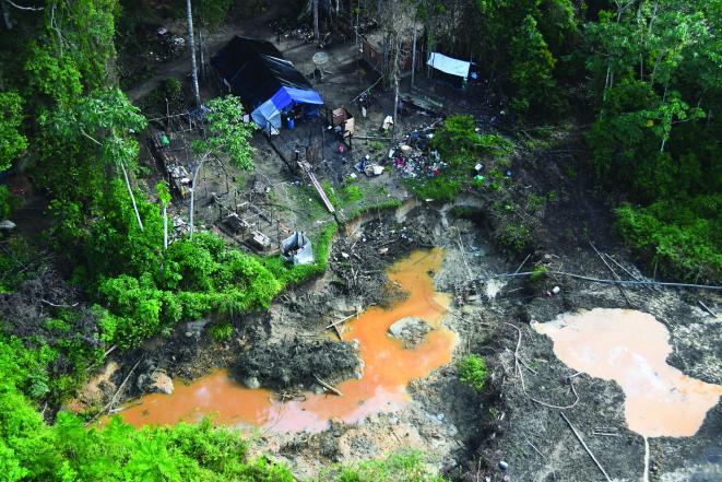 Guyane, Aranymosók